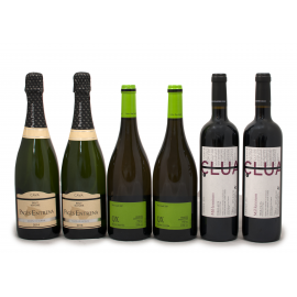 Selecció de 2 vins negres, 2 blancs i 2 caves